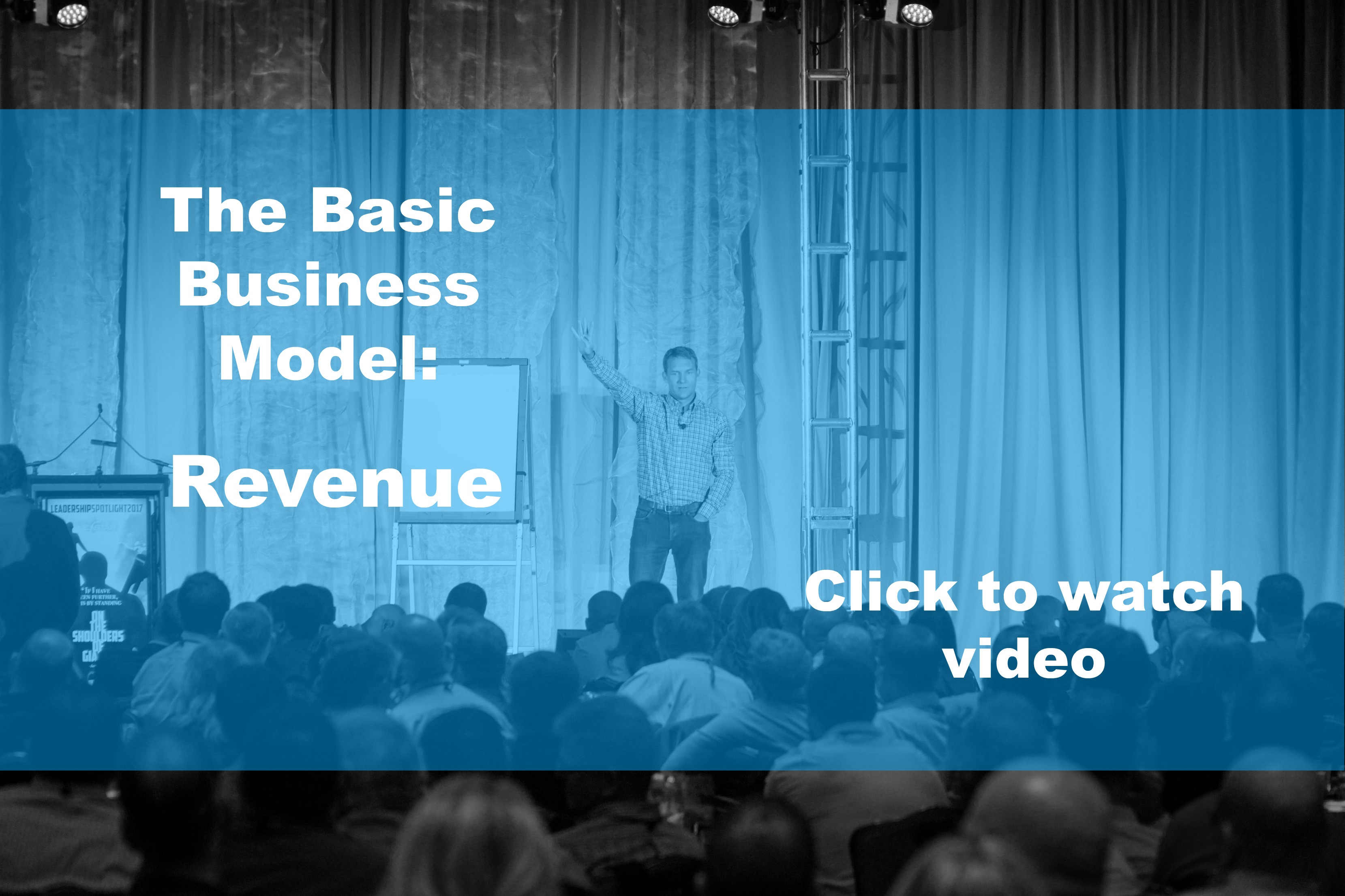 The Basic Business Model- Revenue